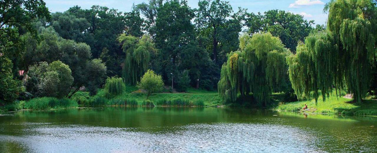 Парки и зелёные зоны возле «Файна Таун»